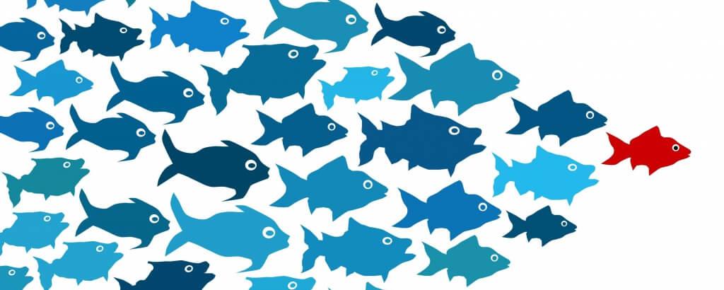 Digital Leadership: Die Bedeutung für den B2B-Bereich